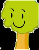 Treeye