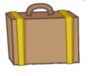 Suit case asset