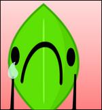 LeafyTearsBox