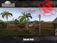 4207-Kokoda Path 1