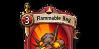 Flammable Bag
