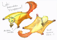 Loki Flying Squirrel