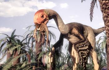 File:Gigantoraptor1.jpg