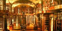 Agnès et Le Blanc: Une Librairie