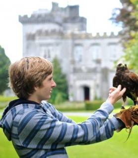 File:Boy and bird.png