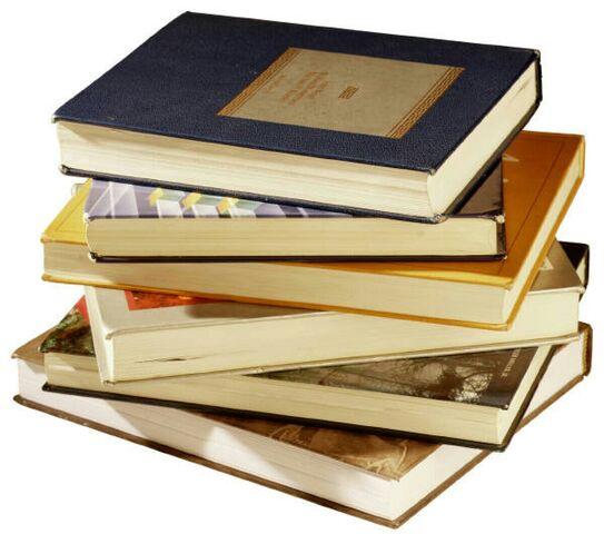 File:Kayla Schoolbooks.jpg
