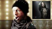 Evolve Official Video artwork