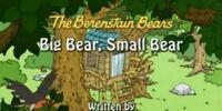 Big Bear, Small Bear