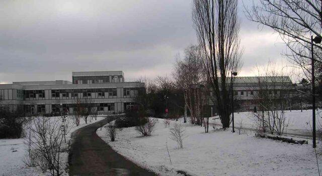 Datei:Freie Universität Berlin Silberlaube im Winter 01-2005.jpg
