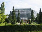 Gewaechshaus botanischergarten berlin.JPG