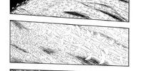 Episode 207 (Manga)