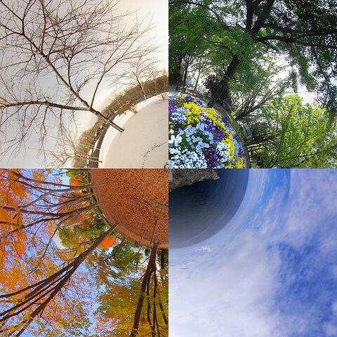 File:Four seasons in Japan.jpg