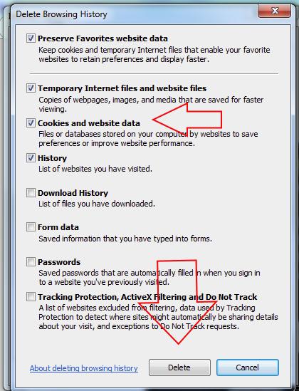 MS Internet Explorer Problem Image No 04