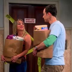 Sheldon returning from the grocery with Penny.