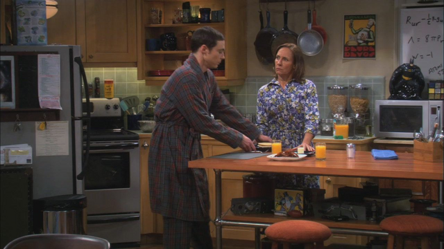 File:TBBT S05E06 The Rhinitis Revelation.png