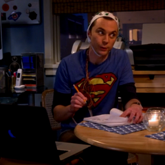 Sheldon knows he's hallucinating and not thinking right.