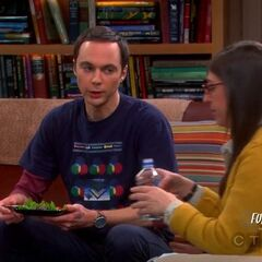Amy talking to Sheldon about the position.