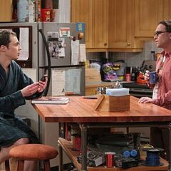 Sheldon talking about the night he spent with a geology book.