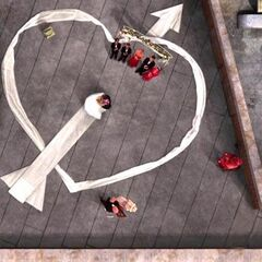 Overhead of the wedding party.