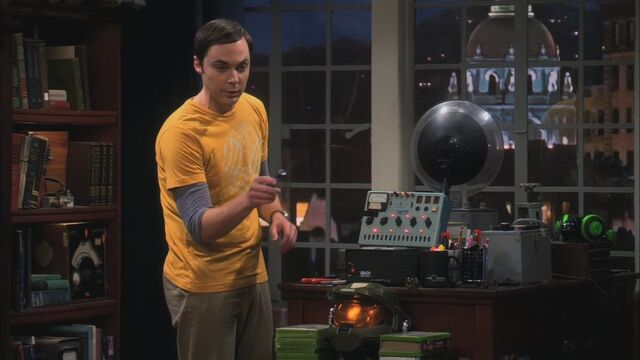 File:5x09-The-Ornithophobia-Diffusion-the-big-bang-theory-26868384-1280-720.jpg