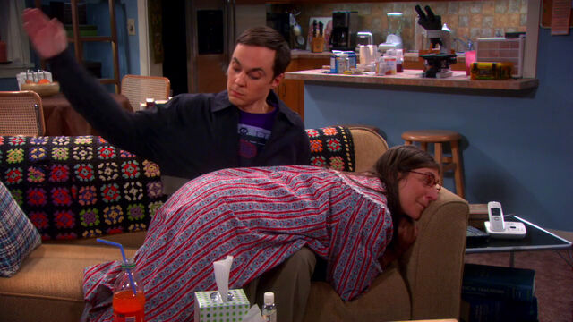 File:Sheldon punishing Amy harder.jpg