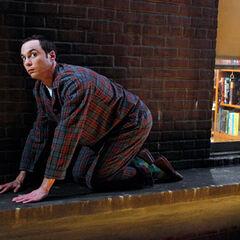 Sheldon on the ledge.
