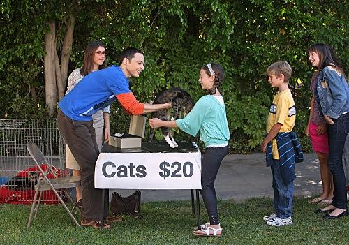Datei:Cats20dollars.jpg