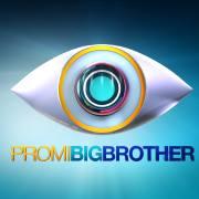 PromiBigBrother1