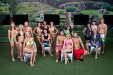 BB14 teams