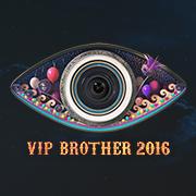 Big Brother Bulgaria VIP 8 Logo
