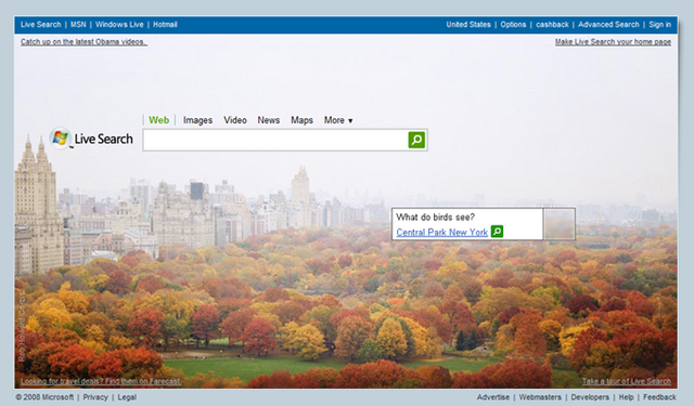 File:Live Search New.png