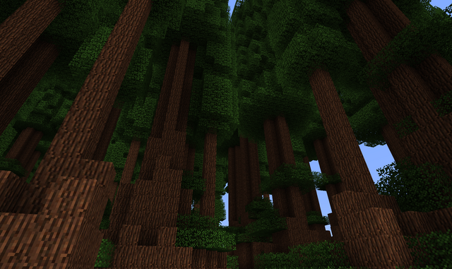 File:Redwood Forest.png