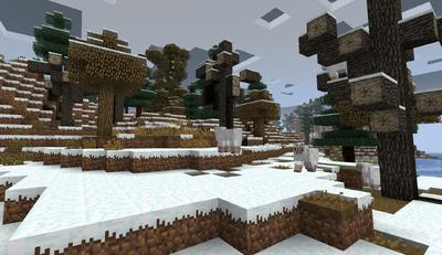 SnowyDeadForestMDC