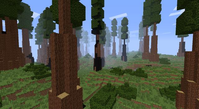 File:Redwood.png