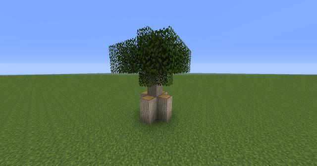 File:MangroveTree03.png