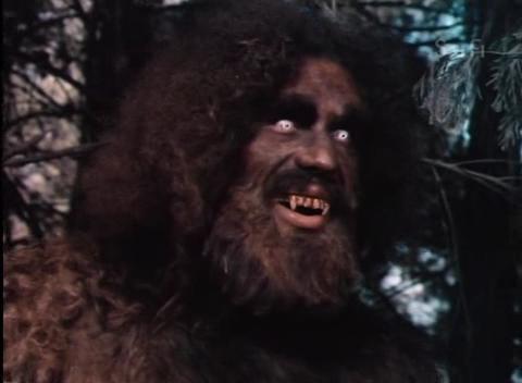File:Der 6-Millionen-Dollar-Mann - S03E16 - Bigfoot Und Die Ausserirdischen - Teil 1.avi 001480880.jpg