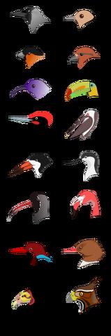 File:BirdBeaks.png