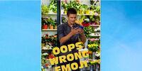 Oops Wrong Emoji/Gallery