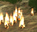 The Flaming Followers