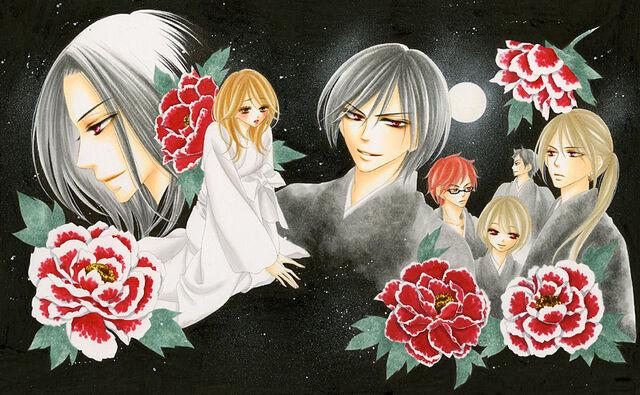 File:Black Bird wallpaper.jpg