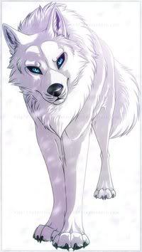 Whitewolf3