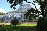 Palm Greenhouse, St. Petersburg Botanical Garden