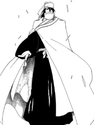 Byakuya after training redone
