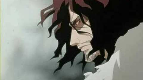 Bleach OST 12 nothing can be explained