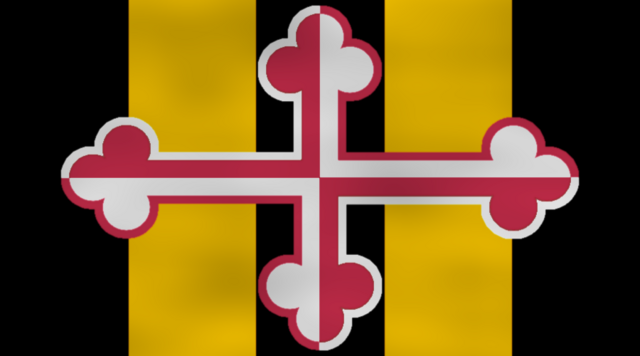 File:Unofficial alliance flag.png