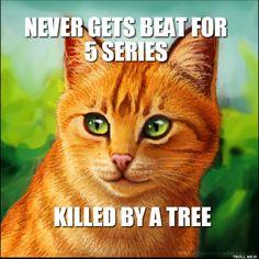 File:Firestar gets killed by a tree.jpg