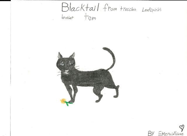 File:Emerald-blaze-blacktail.jpg