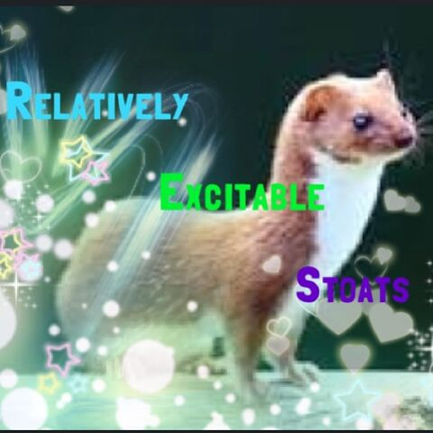 File:Relatively excitable stoats by hollydance-d6a2z8s.jpg