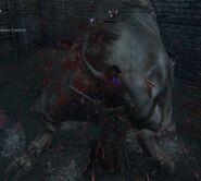 Image-bloodborne-screen-69c