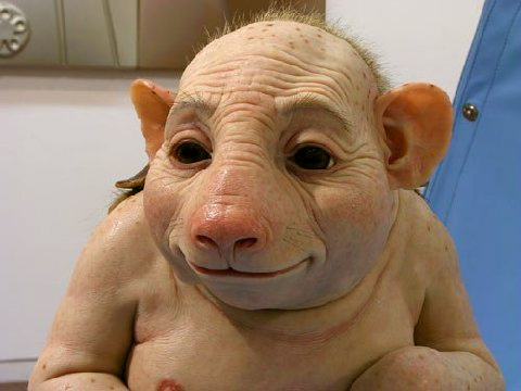 File:Swine Flu.jpg